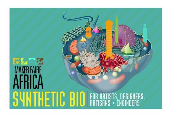 MFA2011 DIY Bio